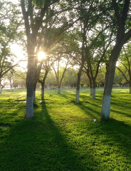 92 Parque Chamizal