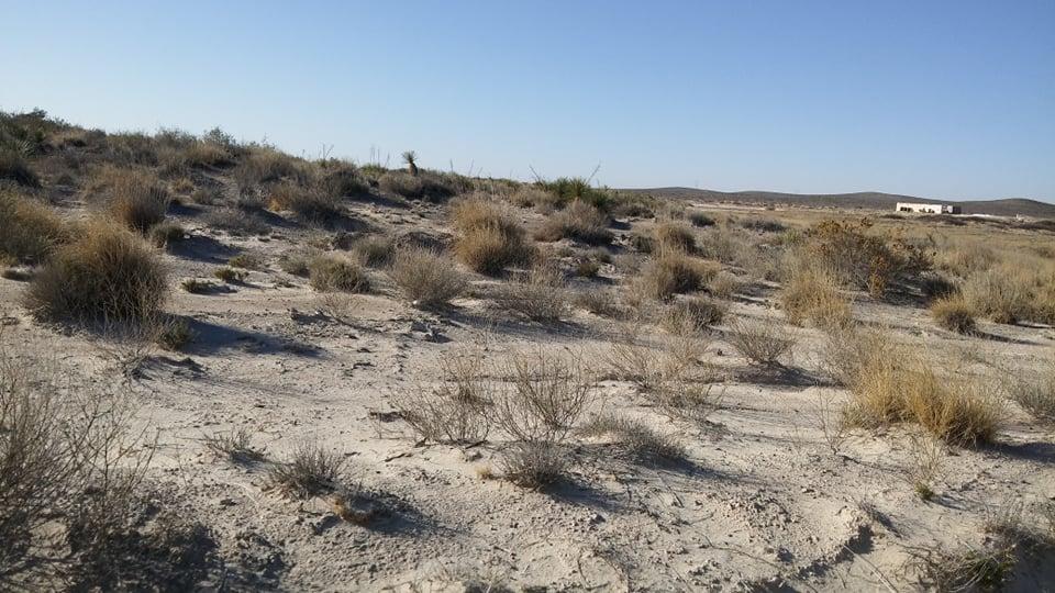 170- desierto