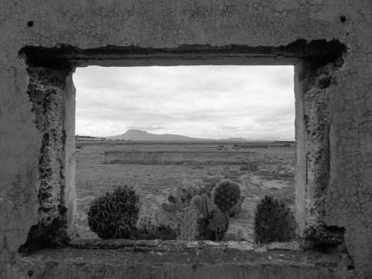 199 Desierto cuadro.jpg