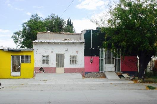 205 Constitución.jpg